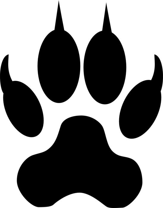 wolf paw print drawing