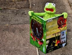 reading soft kermit
