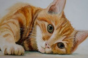 Sweet red Cat drawing