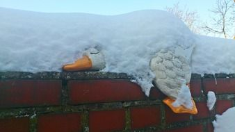 porcelain white duck on a brick fence in deep snow