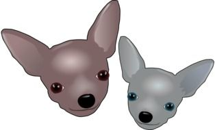 drawing of two gray chihuahuas