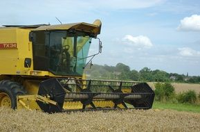 harvester harvesting on the field