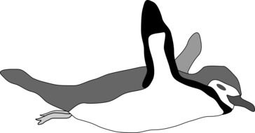 Swimming penguin clipart