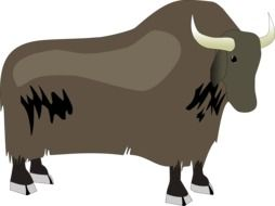 drawing of a bison on a white background