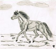 drawing a running horse across a meadow