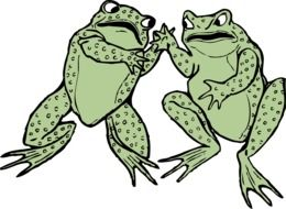 graphic image of a pair of amphibian frogs