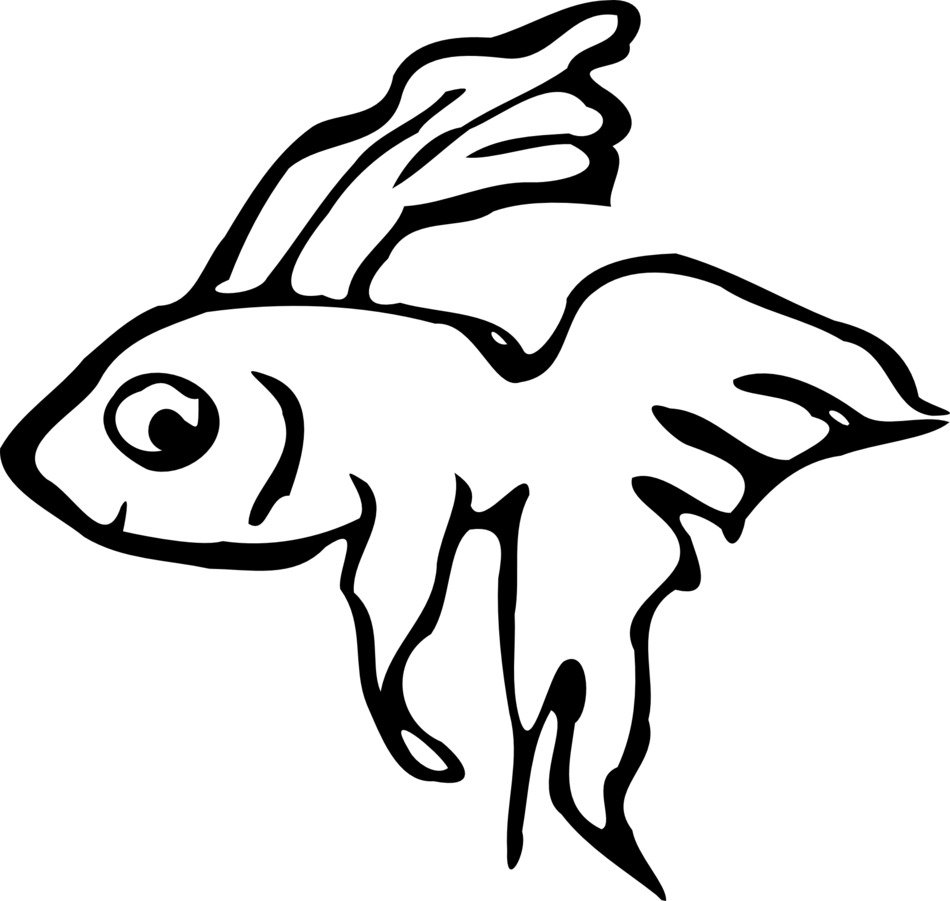 Ornamental Fish, black outline
