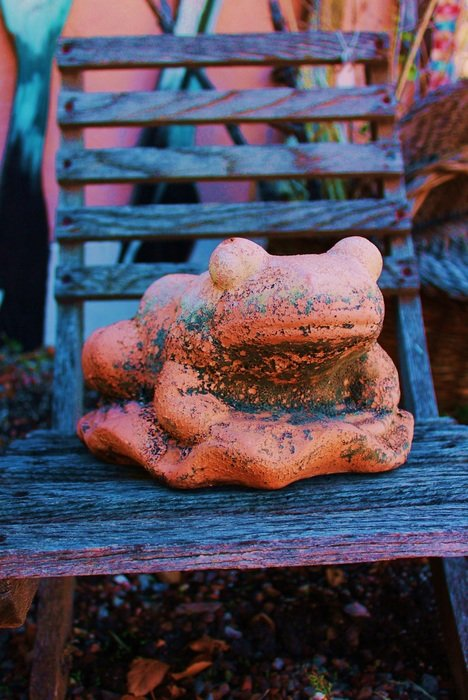 frog figure on a bench