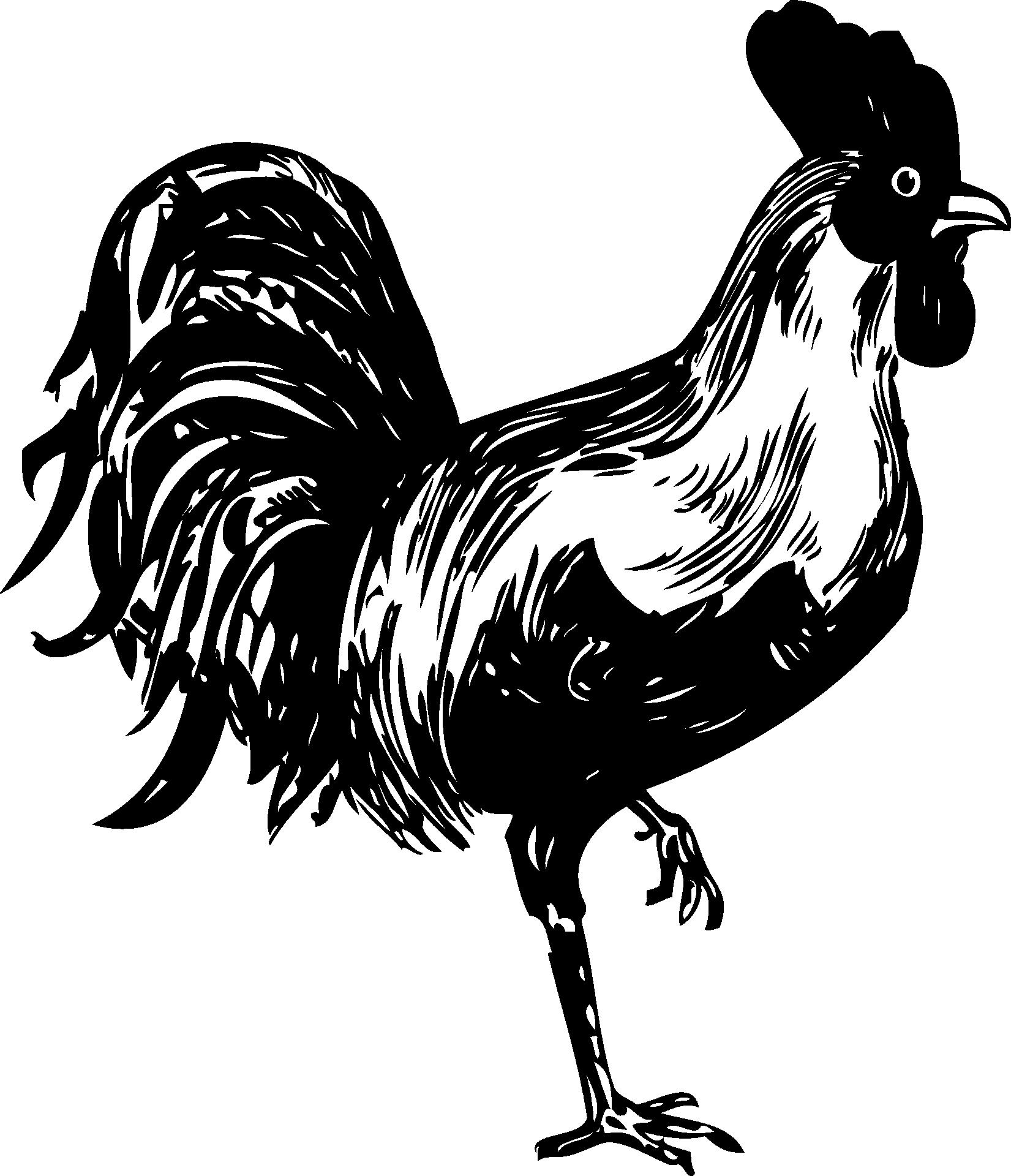 rooster head clip art - HD1651×1920