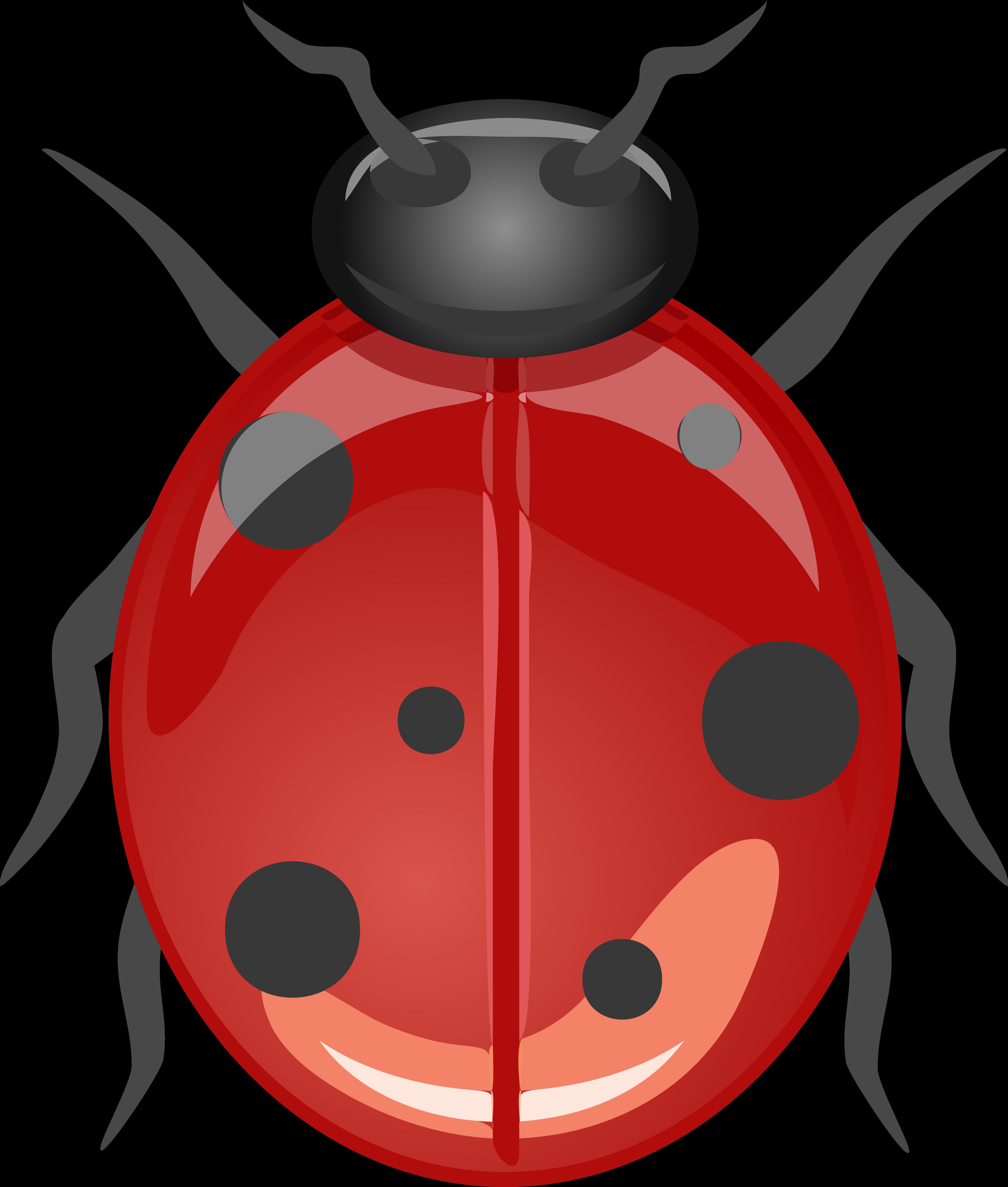 - Lucky Ladybug Clipart Free Image