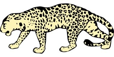 drawn spotted leopard on a white background