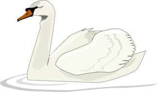 drawing of a white swan on the river