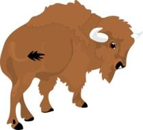 Brown bison as a clipart