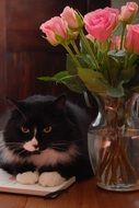 black cat near a vase of flowers