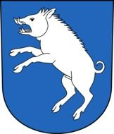 the boar is painted on the coat of arms