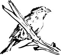 black and white drawing of a perched bird