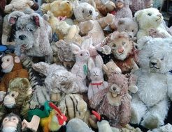 Lots of Stuffed toys