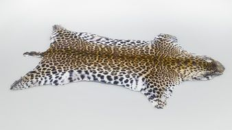 leopard carpet on the ground