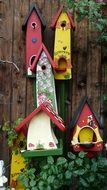 colorful bird feeders
