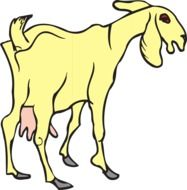 Yellow Standing Goat, illustration