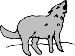 drawing of a gray wolf on a hill