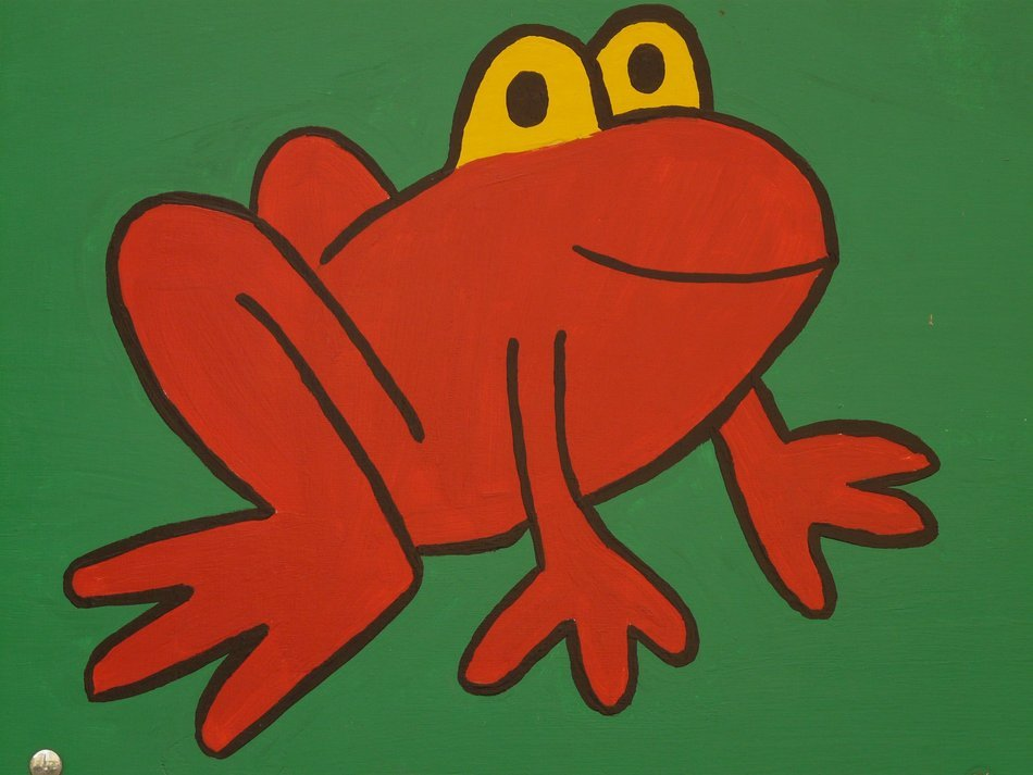 red Frog Cartoon Drawing