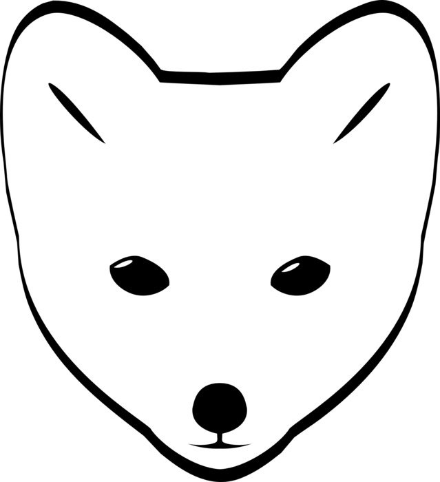 drawing of an arctic fox