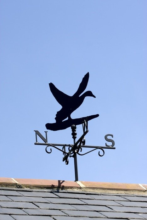 duck shaped weather vane
