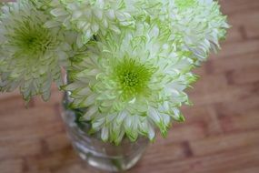 white flowers in a glass vase