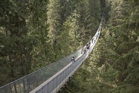 The Capilano Suspension Bridge is a simple suspension bridge crossing the Capilano River
