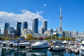 panoramic view of harbor in toronto on a sunny day