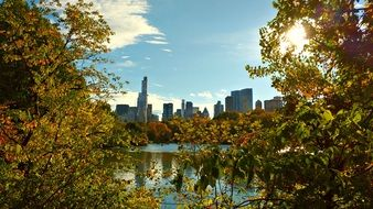 view from central park with colorful plants near the water to New York
