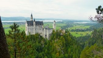 Neuschwanstein Castle behind green trees