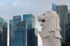 fish lion statue against the background of skyscrapers in Singapore
