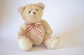 cute Teddy Bear Toy
