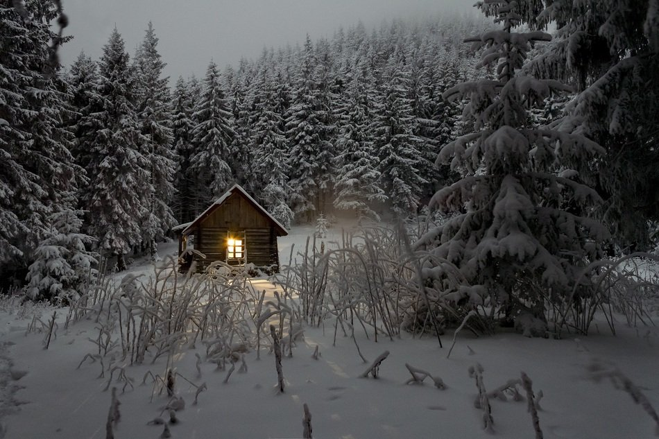 Cabin in a snowy forest