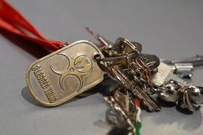 Key Ring with Keys Bunch