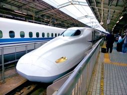 Shinkansen High-Speed Train