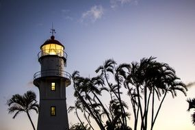 Lighthouse and palm trees at Dusk, usa, Hawaii, O'ahu
