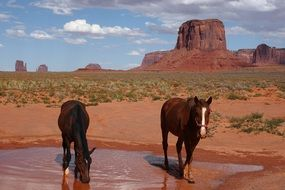 Monument Valley in the National Park