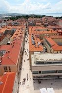 panoramic view of the architecture of the city of Zadar in croatia