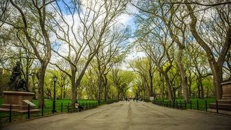 New York City park at spring