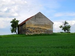 old barn in the green meadow