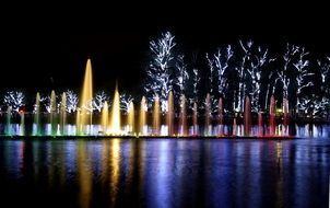 illuminated Ibirapuera park at night