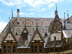 patterned roof of hotel de dieu