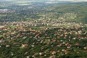 aerial view of a green suburb