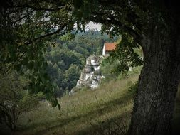 Old castle on a hill in German