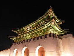 Seoul Forbidden City by night