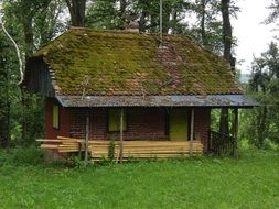 old hut among green forest