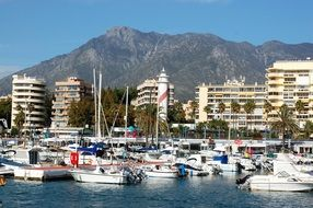 Picture of port in Marbella